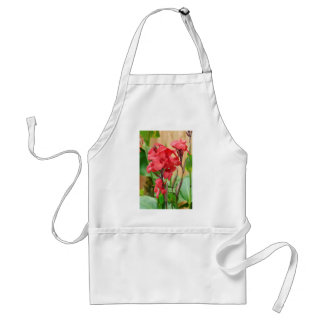 Red canna flowers standard apron