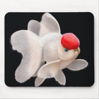 Red Cap Oranda Goldfish Mousepad