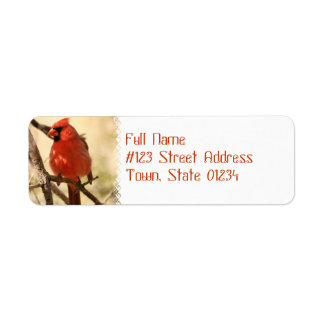 Red Cardinal  Address Labels