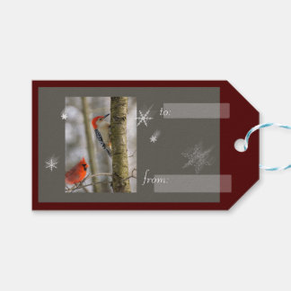 Red Cardinal and Woodpecker Snowflakes Birds Pack Of Gift Tags