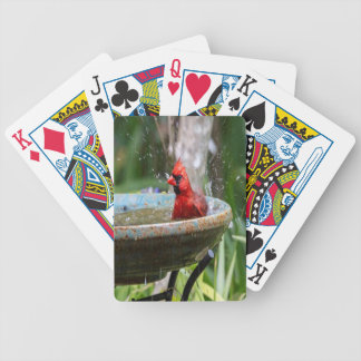 red cardinal bicycle playing cards