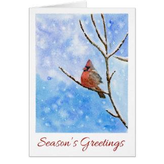Red Cardinal Bird on a Snowy Branch|Christmas Card