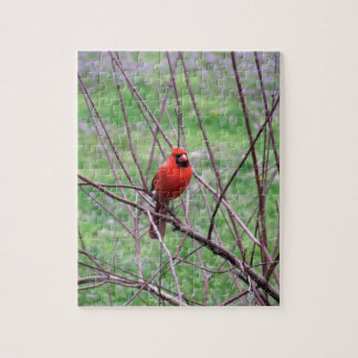 Red Cardinal Bird Sitting on Branch Jigsaw Puzzle