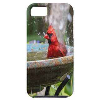 red cardinal case for the iPhone 5