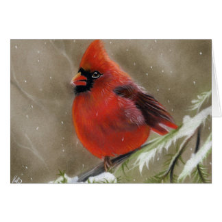 Red Cardinal in snow christmas card