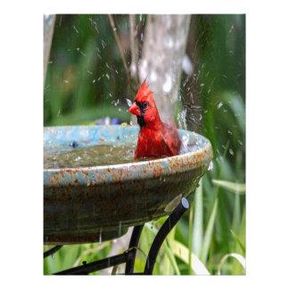 red cardinal letterhead