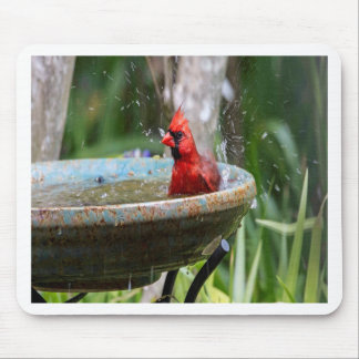 red cardinal mouse pad