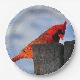 Red Cardinal on Wooden Stump Paper Plate