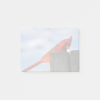 Red Cardinal on Wooden Stump Post-it® Notes