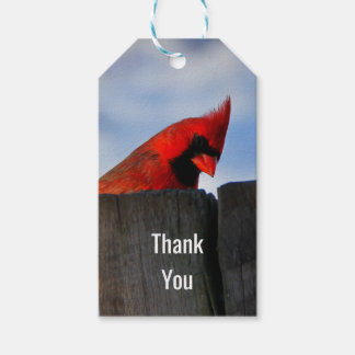 Red Cardinal on Wooden Stump Thank You Gift Tags
