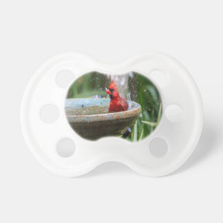 red cardinal pacifier