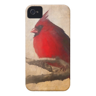 Red Cardinal Painting iPhone 4 Case-Mate Case