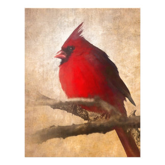 Red Cardinal Painting Letterhead