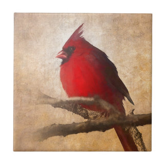 Red Cardinal Painting Tile