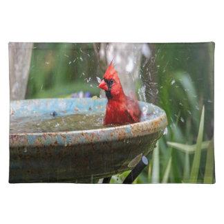 red cardinal placemat