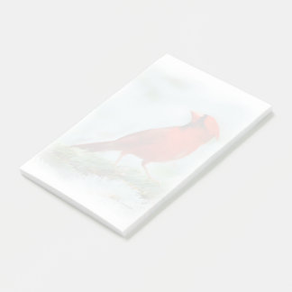 Red Cardinal Print Post-it Notes