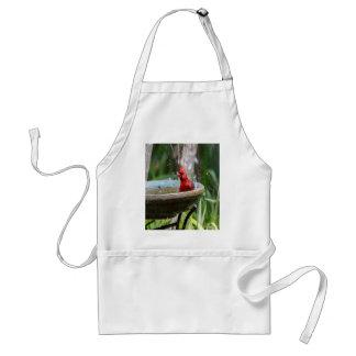 red cardinal standard apron