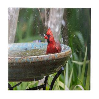 red cardinal tile