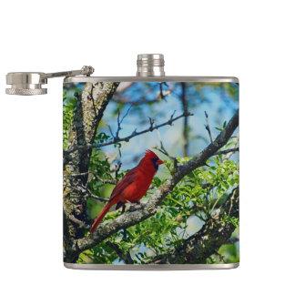 Red Cardinal  Wild Bird Photograph Hip Flask