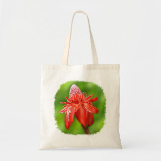 Red Carribean Rose Exotic Flower