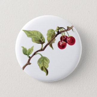 Red cherries  branch button