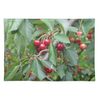 Red cherries on tree in cherry orchard placemat