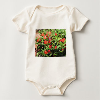 Red chili peppers hanging on the plant baby bodysuit