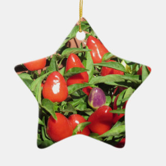 Red chili peppers hanging on the plant ceramic ornament