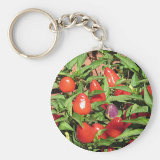 Red chili peppers hanging on the plant keychain
