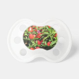 Red chili peppers hanging on the plant pacifier