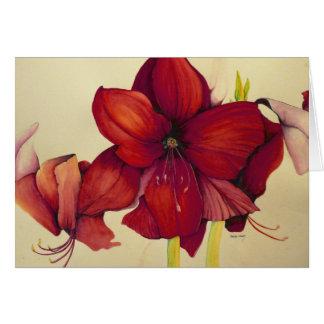 Red Christmas Amaryllis Painting Greeting Card