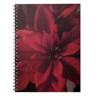 Red Christmas Poinsettia Photograph Notebook