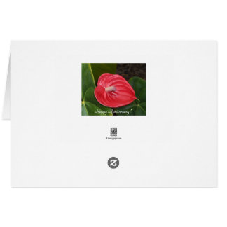 Red Chrysanthemum, Happy Anniversary-Greeting Card