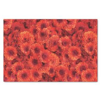 Red Chrysanthemums Tissue Paper