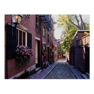 Red Cobblestone Acorn Street flowers Postcard