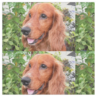 red cocker-spaniel-.png fabric