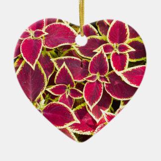 Red Coleus plants closeup Ceramic Heart Ornament