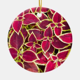 Red Coleus plants closeup Round Ceramic Ornament