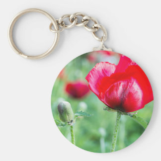 Red corn poppy with flower bud basic round button keychain