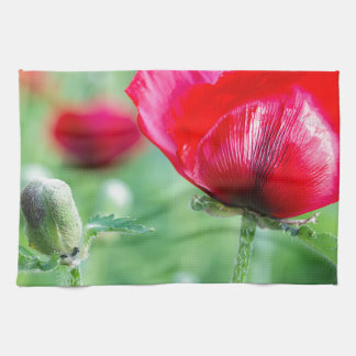 Red corn poppy with flower bud hand towels