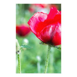 Red corn poppy with flower bud stationery design