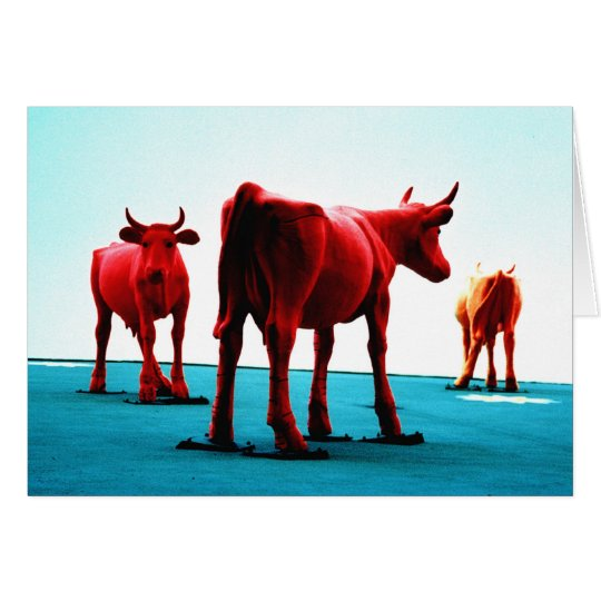 Red Cows Card
