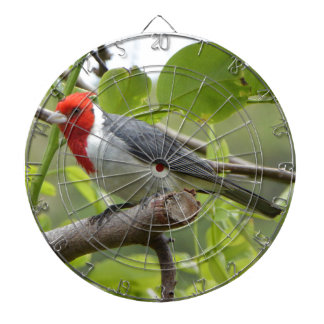 Red-crested Cardinal Dartboard