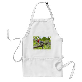Red-crested Cardinal Standard Apron