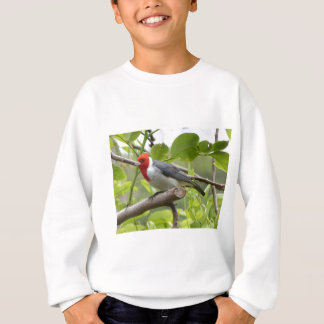 Red-crested Cardinal Sweatshirt