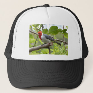 Red-crested Cardinal Trucker Hat