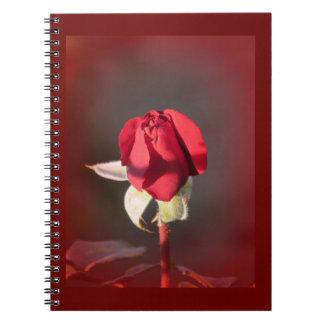 Red Crimson Bouquet Rosebud Notebook