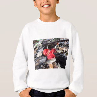 Red Cup Fungus Sweatshirt