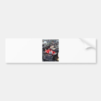 Red Cups and Leaves Bumper Sticker