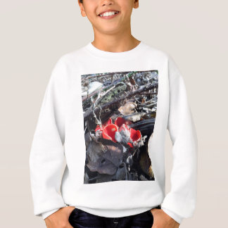 Red Cups and Leaves Sweatshirt